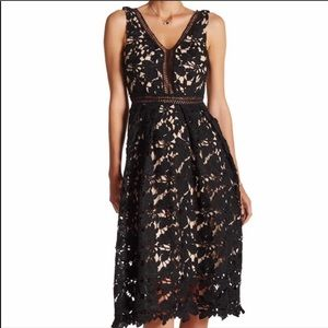 Romeo & Juliet Couture Black Croqueted Lace Dress